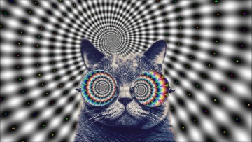 Trippy Cat 2017 MINIMAL HOUSE ELECTRO [ Coronita 2017 Minimal After Megamix ]