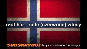 Szybka i skuteczna nauka języka norweskiego - Wygląd - słówka