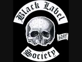 Black Label Society I Never Dreamed (Skynyrd cover)