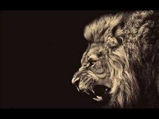 Best Motivational Speech, Music | Lion Edition 2014