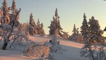 Winter scenery - Norway, Nissedal (HD - 1080p)