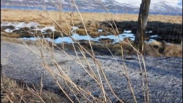 Tisnes - Norway, Spring  [Canon EOS 550D]