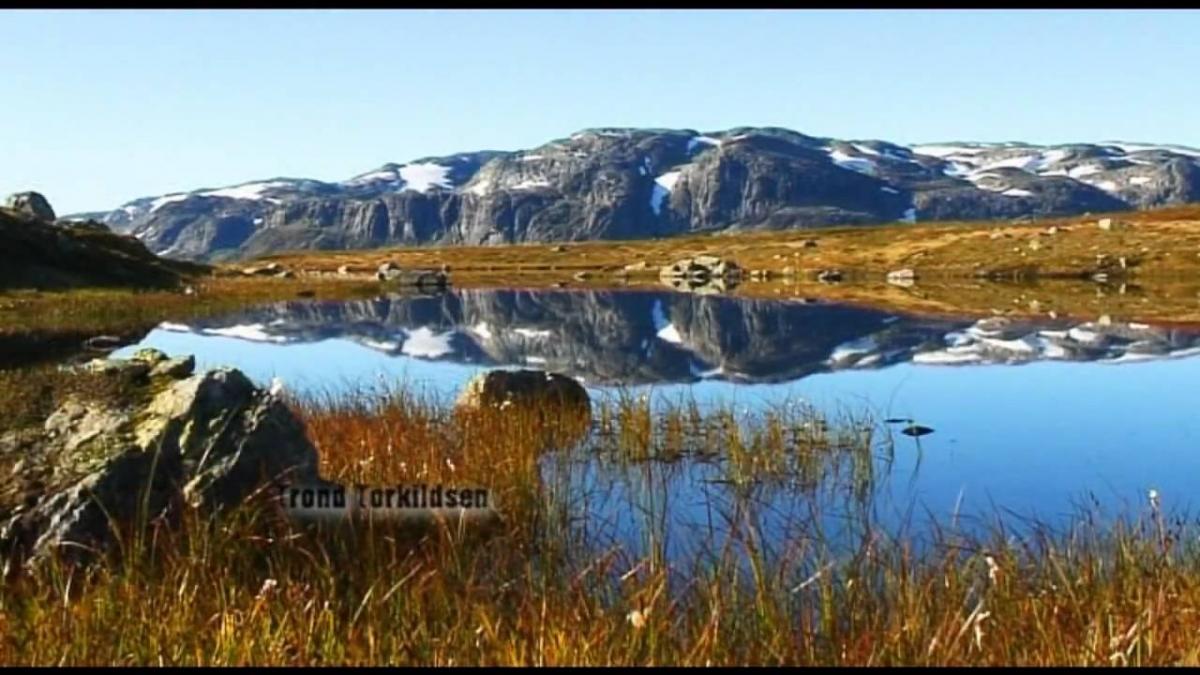 OFFICIAL TRAILER, VERSION NORWEGIAN - FLUEFISKE TIL FJELLS - FLYFISHING IN THE MOUNTAINS