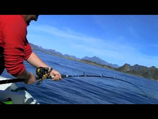 Wyprawa na Czarniaki - Norwegia - Lofoty - sierpień 2011