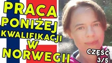Czemu Polacy narzekają na Polaków w Norwegii - dr Elżbieta Czapka (3/5) Moja Norwegia #44