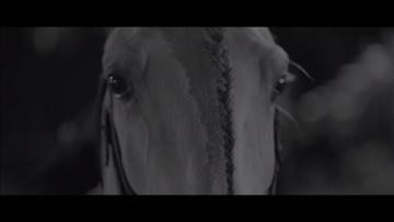 Smolik / Kev Fox - Run (Official Video)