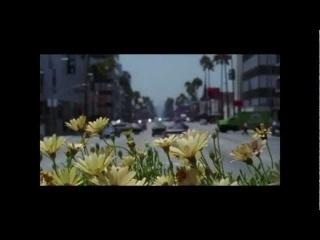 Kris Menace Vs. Empire Of The Sun - Walking On eFeel (Leksy Mashup)